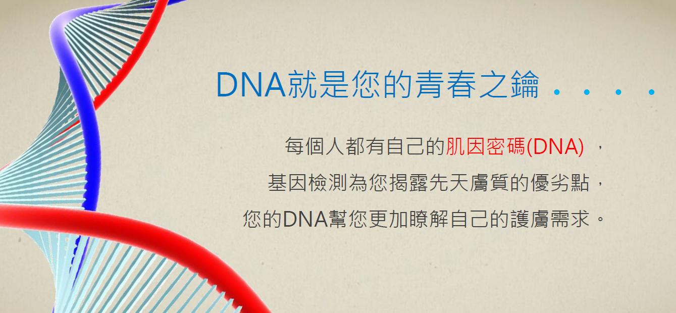 基因檢測03